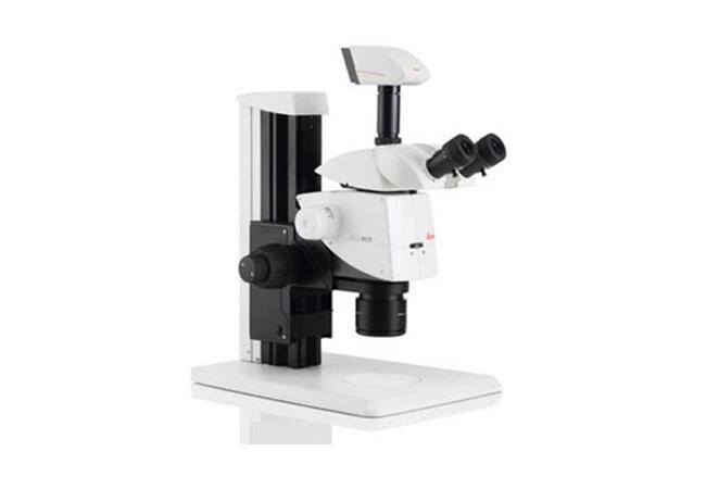 徕卡立体显微镜M125